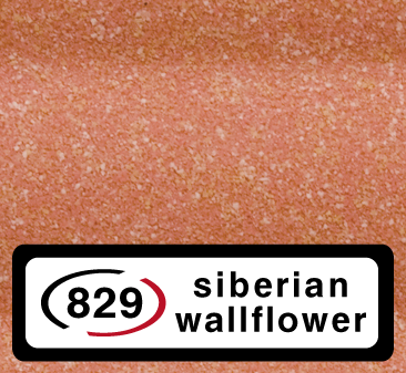 829-siberian wallflower [+216,00 RON]